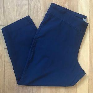 Dalia Navy Blue Pull On Stretch Pants Plus Size 22